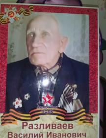 Разливаев Василий Иванович