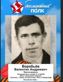 Воробьев Валентин Андреевич