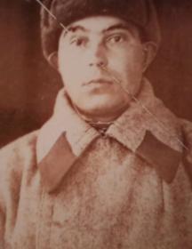Мамин Дмитрий Степанович