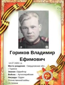 Гориков Владимир Ефимович