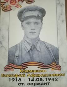 Мамыкин Тимофей Афанасьевич