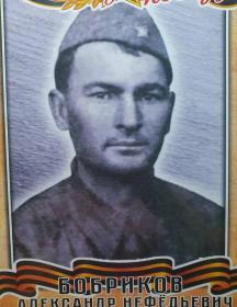 Бобриков Александр Нефедьевич