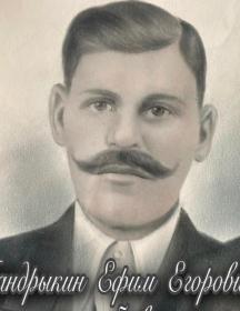 Мандрыкин Ефим Егорович