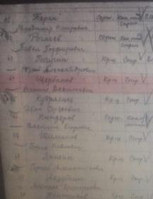 Щербаков Данил Васильевич