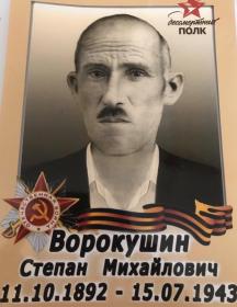 Ворокушин Степан Михайлович