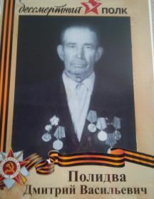Полидва Дмитрий Васильевич