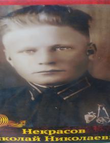 Некрасов Николай Николаевич