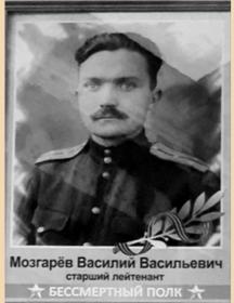 Мозгарёв Василий Васильевич