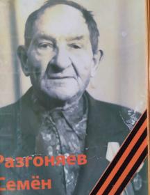 Разгоняев Семен Васильевич