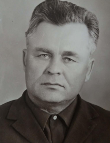 Шкверя Михаил Ильич