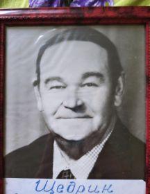 Щедрин Владимир Семенович