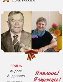 Гринь Андрей Андреевич
