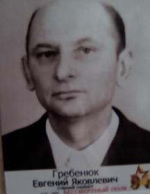 Гребенюк Евгений Яковлевич