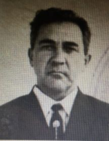 Воронков Михаил Григорьевич