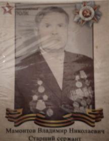 Мамонтов Владимир Николаевич