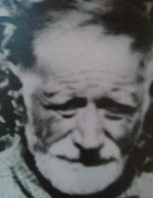 Гаршин Василий Степанович