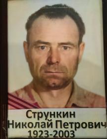 Стрункин Николай Петрович