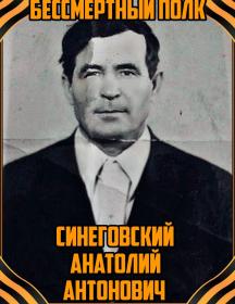 Синеговский Анатолий Антонович