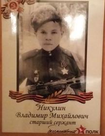 Никулин Владимир Михайлович