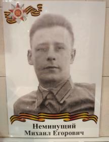 Неминущий Михаил Егорович