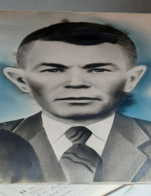 Туренко Дмитрий Моисеевич