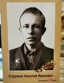 Стрункин Николай Иванович