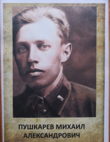 Пушкарёв Михаил Александрович