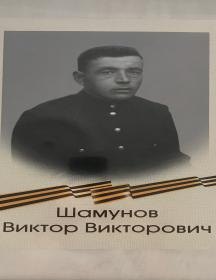 Шамунов Виктор Викторович