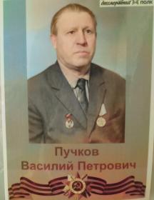 Пучков Василий Петрович