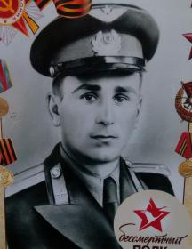 Сапельченко Дмитрий Иванович