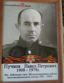Пучков Павел Петрович