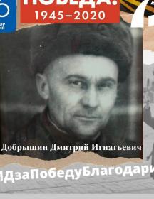 Добрышин Дмитрий Игнатьевич