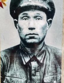 Меркулов Ефим Николаевич