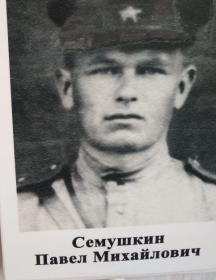 Семушкин Павел Михайлович