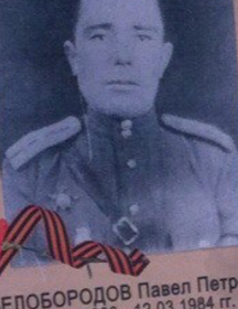 Белобородов Павел Петрович