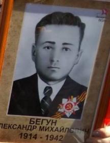 Бегун Александр Михайлович