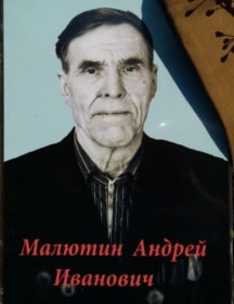 Малютин Андрей Иванович