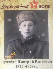 Кулябин Дмитрий Власович