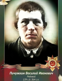 Пичужкин Василий Иванович