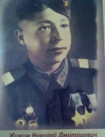 Жижин Николай Дмитриевич