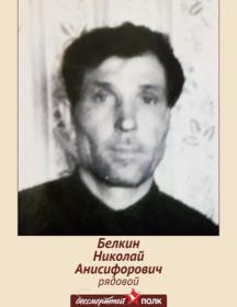 Белкин Николай Анисифорович