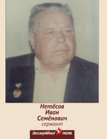 Нетёсов Иван Семёнович
