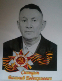 Синицын Василий Евдокимович
