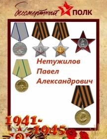 Нетужилов Павел Александрович