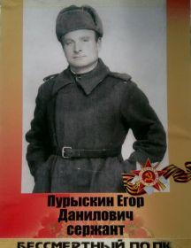 Пурыскин Егор Данилович