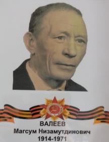 Валеев Магсум Низамутдинович