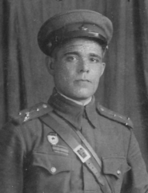 Плешаков Дмитрий Моисеевич