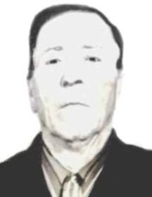 Петин Николай Павлович