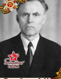 ВАГАЙЦЕВ АЛЕКСАНДР НИКОЛАЕВИЧ