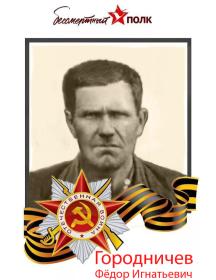 Городничев Фёдор Игнатьевич